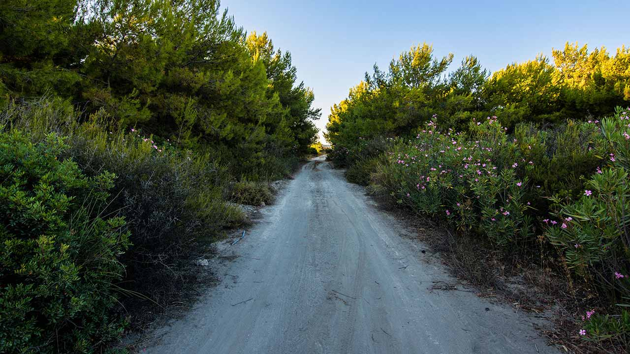 Spiagge di Rocca Imperiale - strada della spiaggia della Pineta